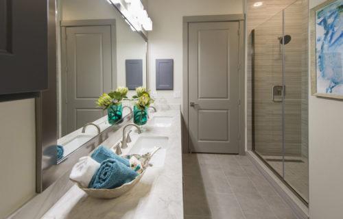 luxury spa bathroom with shower
